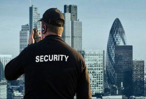 GPG - guardia particolare giurata